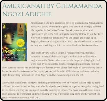 americanah excerpt